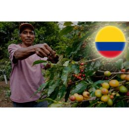 Colombia Excelso Peaberry Yöresel Kahve